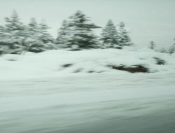 Yoğun kar yağışı etkili oluyor