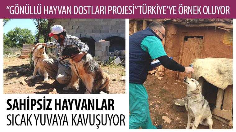 """""""Gönüllü Hayvan Dostları Projesi"""" Türkiye'ye Örnek Oluyor"""