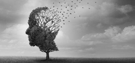 Bunama (Demans), Alzheimer ve Unutkanlık aynı şeyler değil!