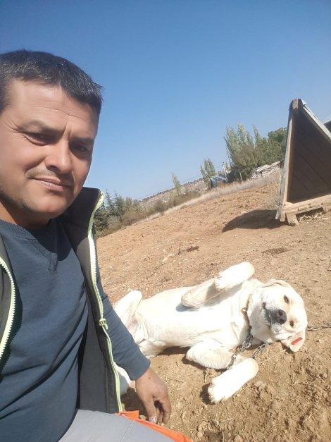 """""""gonullu-hayvan-dostlari-projesi""""-turkiye'ye-ornek-oluyor-004.jpg"""